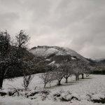 Nieve en Tuña, Tineo